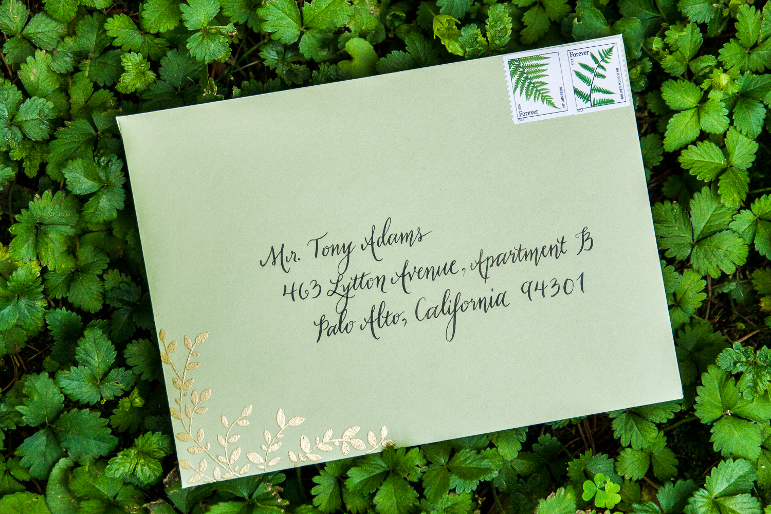 Calligraphy on wedding envelope