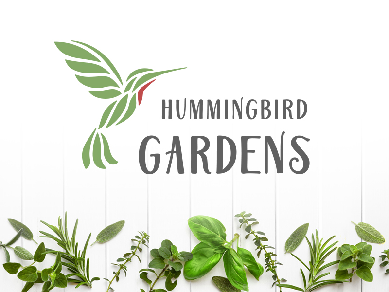 Hummingbird Gardens logo herbs